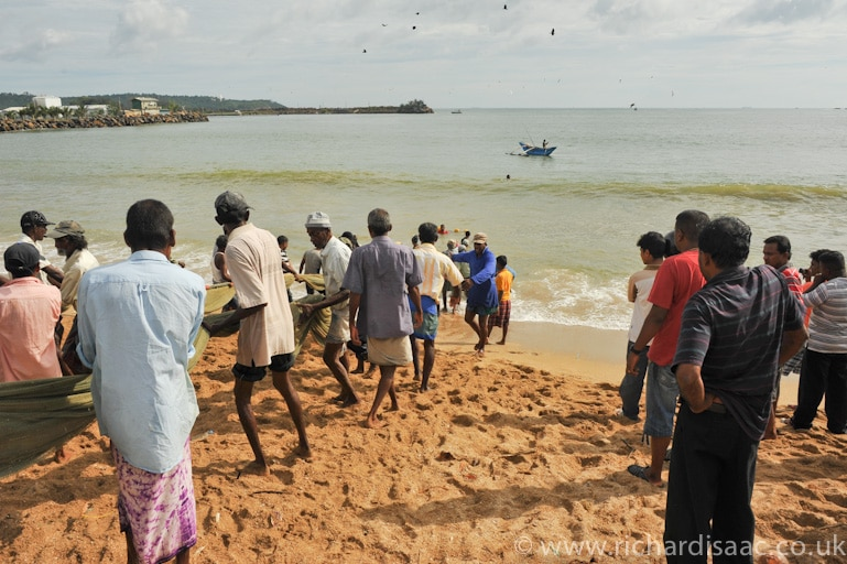 Fishermen haul their catch onto the beach - Galle, Sri Lanka