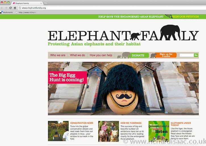 The Faberge Big Egg Hunt publicity pictures – used on Elephant Family's website