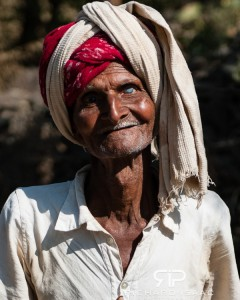 An elderly cattle herder in the hills near Udaipur in Rajasthan, India