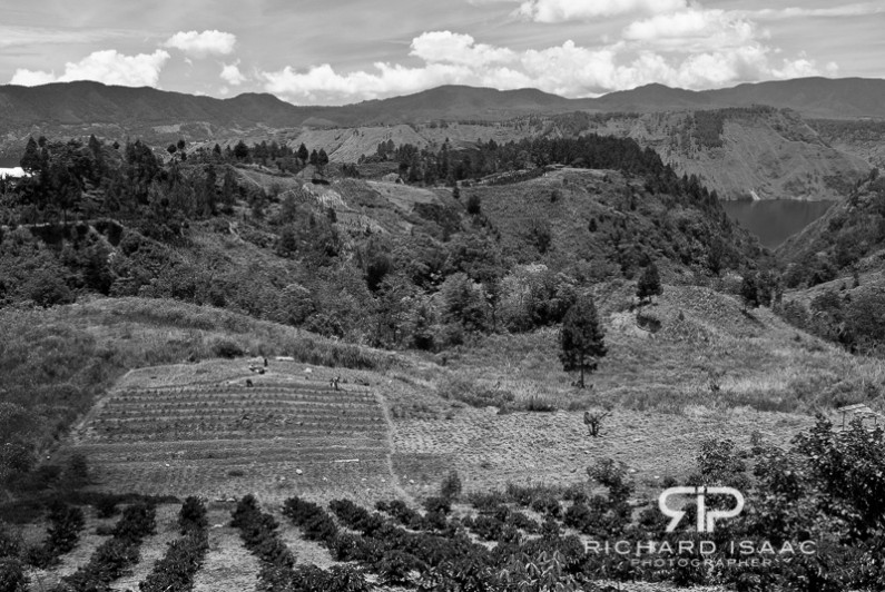 A family work their farmland - Danau Toba, Sumatra, Indonesia