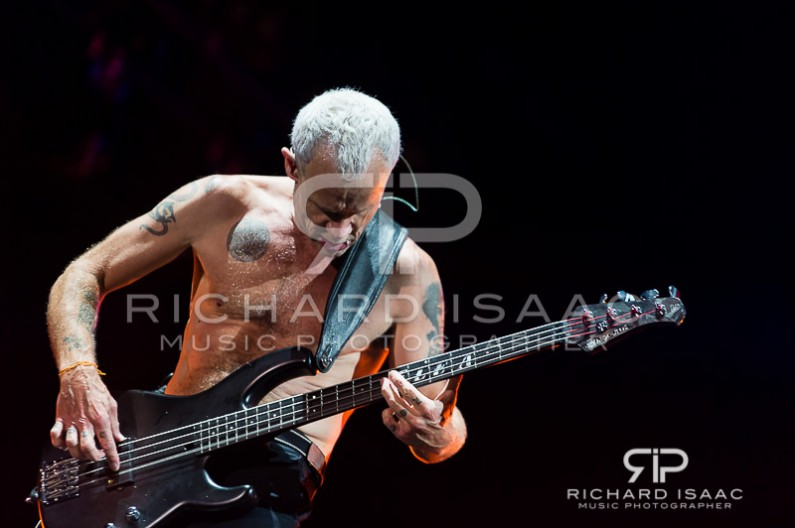 wpid-14-06-2014_Red_Hot_Chili_Peppers_IOW_Fest_2014_068.jpg