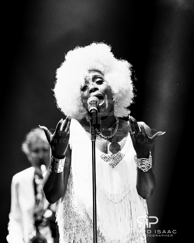 wpid-20140907_Bestival14Sun_Chic_Nile_Rodgers_038-TriX.jpg