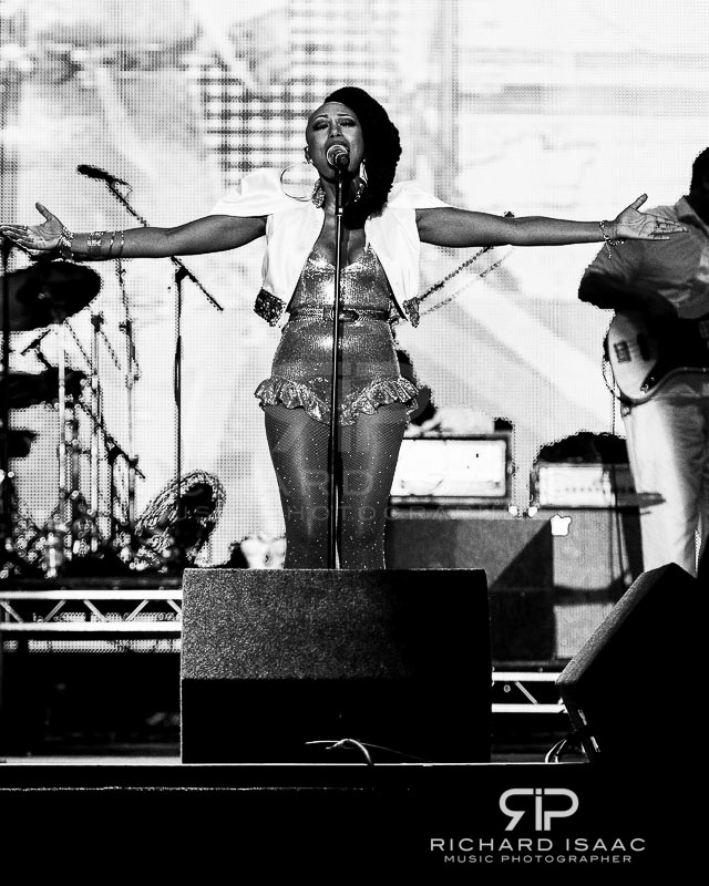 wpid-20140907_Bestival14Sun_Chic_Nile_Rodgers_040-TriX.jpg