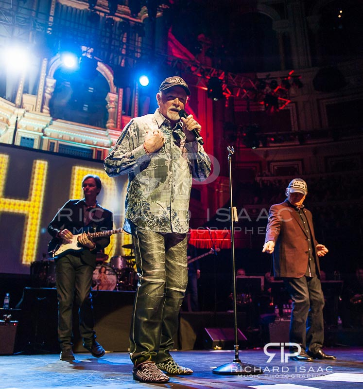 wpid-20150530_Beach_Boys_RAH_029.jpg